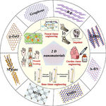 2D nanomaterials for tissue engineering application